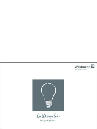 waldmann engineer of light kataloge. Black Bedroom Furniture Sets. Home Design Ideas